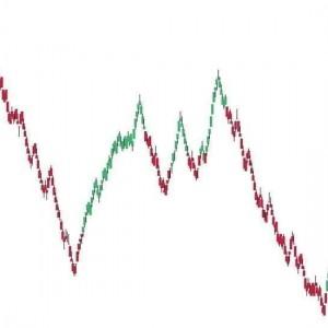 DM Trend Color